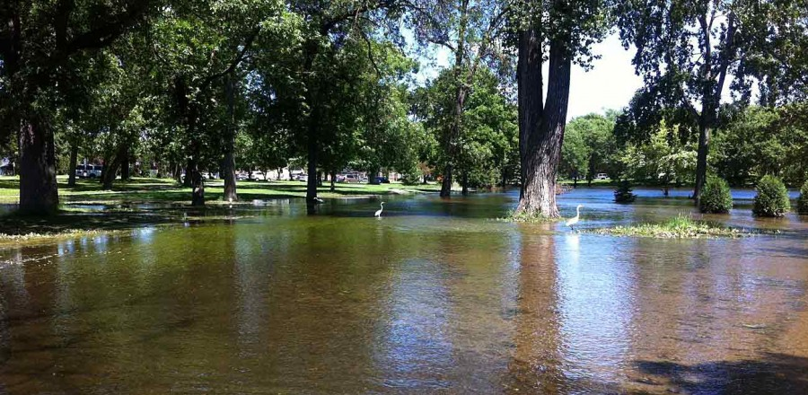 Much of the parkway along Minnehaha Creek and near Lake Nokomis flooded in June.